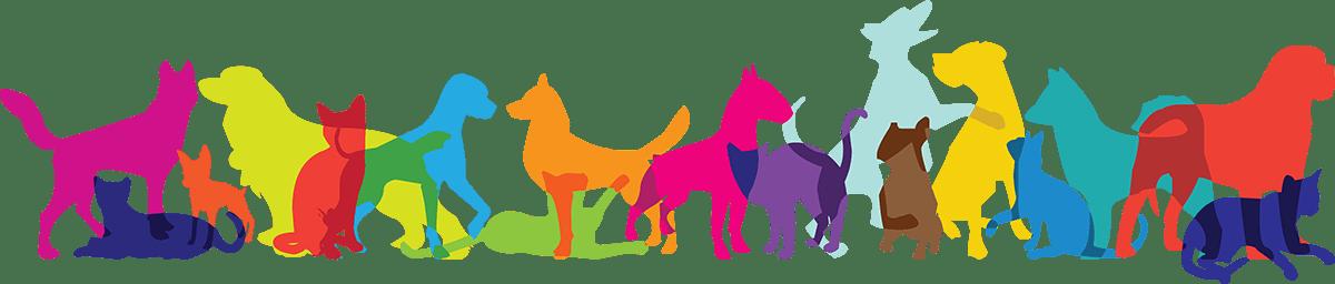 Multicolor pets